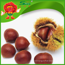 Hot Sale organic chestnuts Chinese snack food